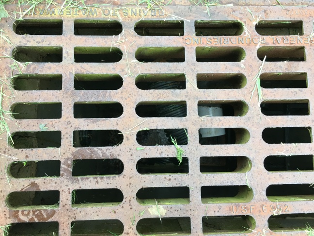 SEWER GRATE FOUND MIDPOINT BETWEEN THE TWO STRUCTURES POSTERIOR TO THE FOUR